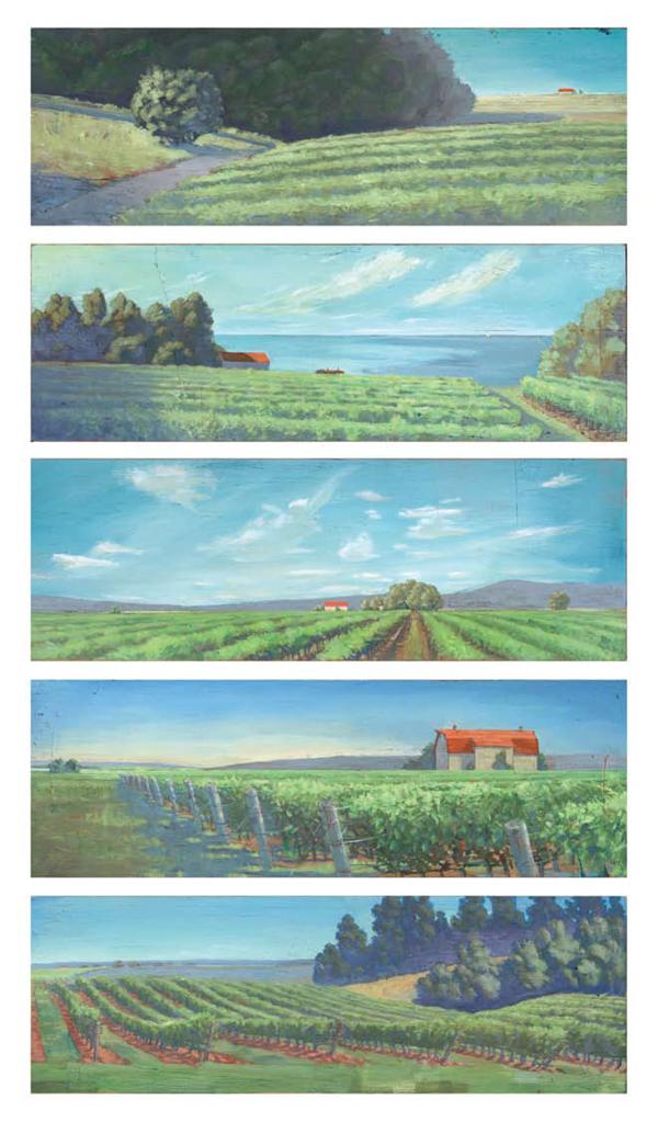 vineyard_rgb_stacked_1