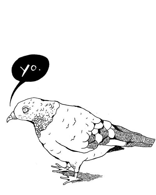 Pigeon Yo - MM712