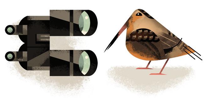 Bird Watching - DM195a