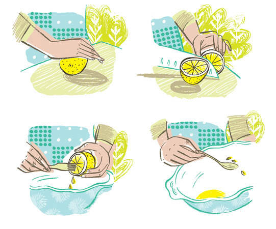 Lemon How To's - KD350