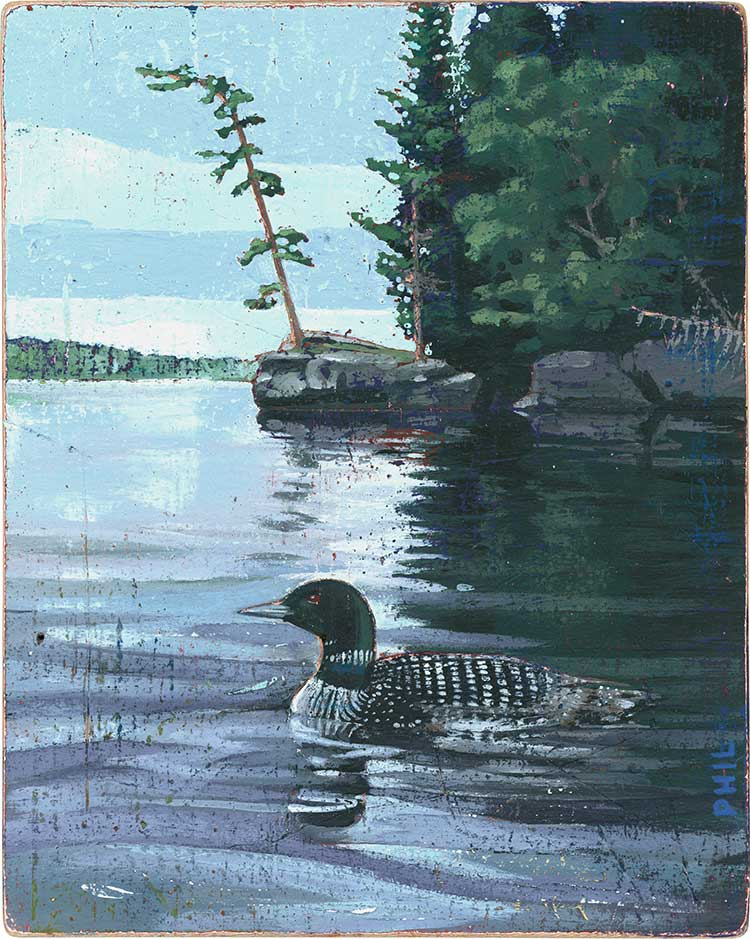 Loon. Illustration by Phil