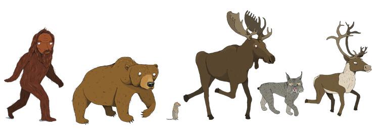 Northern Mammals - MM844