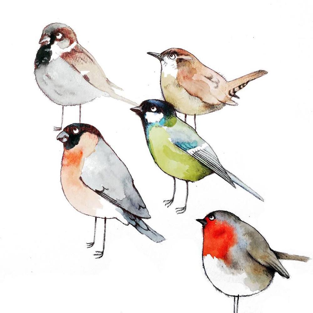 Garden Birds - TB108