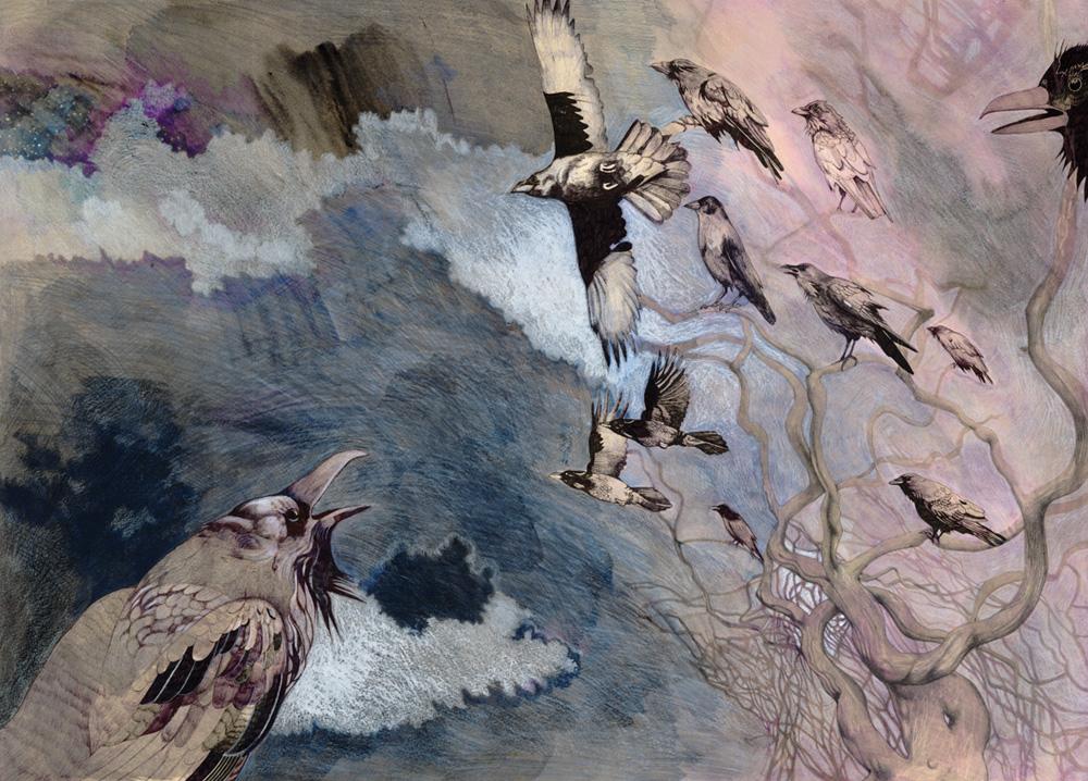Bewilderness Talya Baldwin Illustration