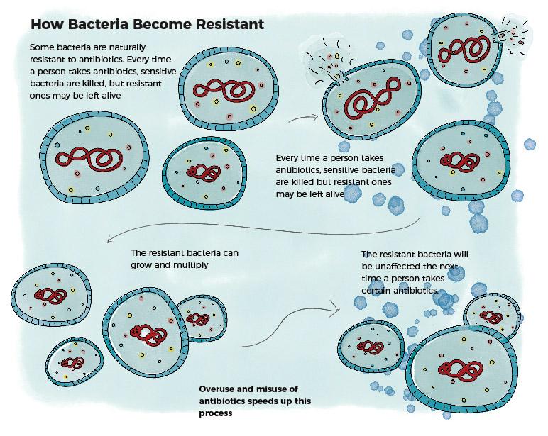 How Bacteria Becomes Resistant - JK391a