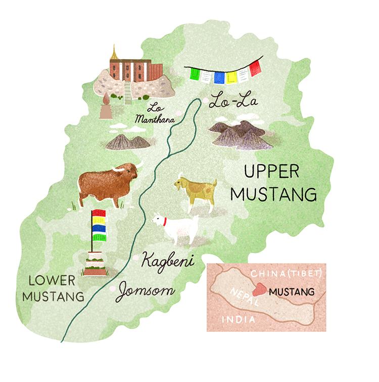 Mustang Region - CO379