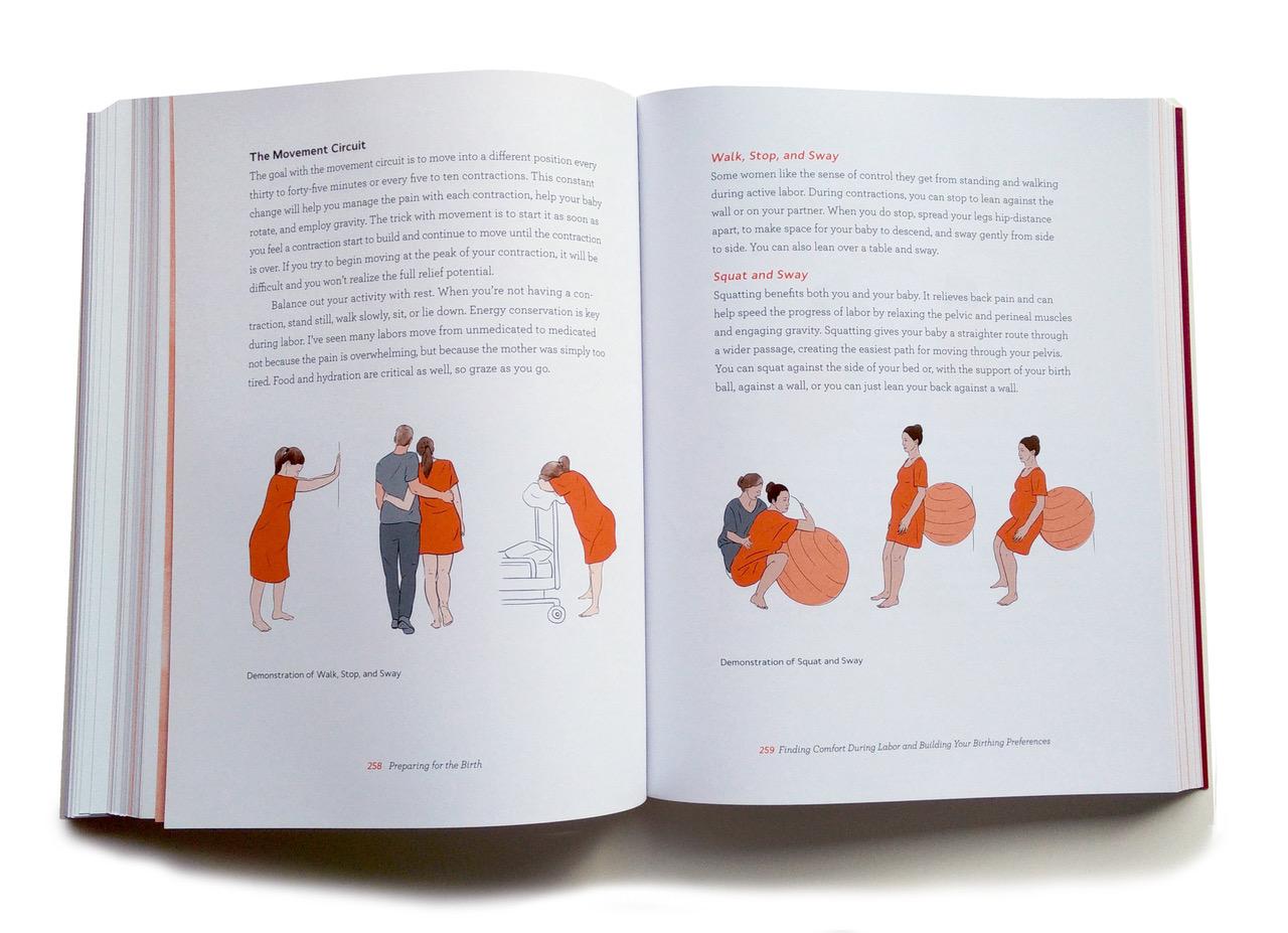 Labor Positions. Inside Illustration by Jillian Ditner for Chronicle Books book, Nurture.
