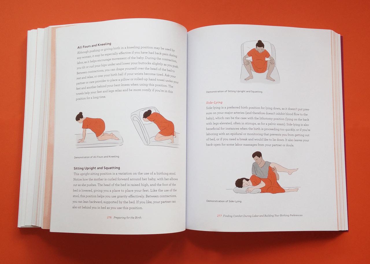 Inside Illustration by Jillian Ditner for Chronicle Books book, Nurture.