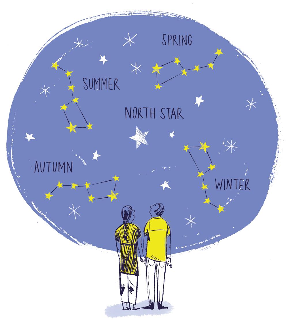 'Star Gazing at the Edelman Planetarium'.