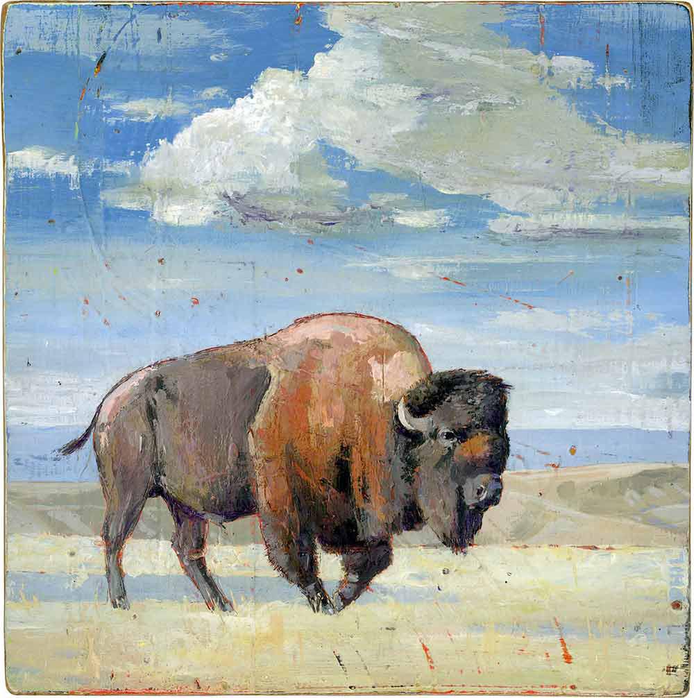 Buffalo - PG466