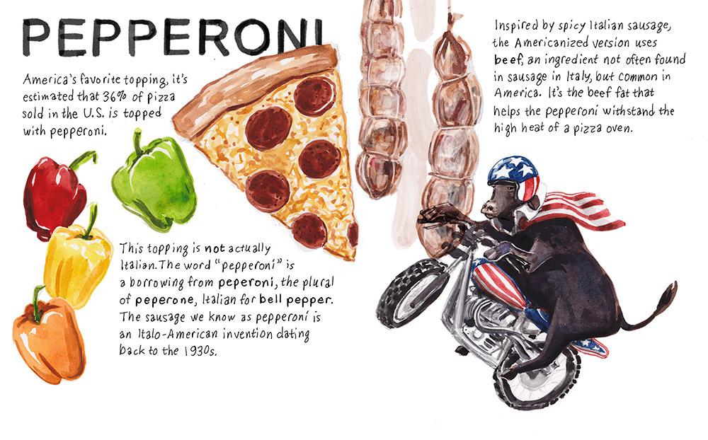Pepper 'oni' - DB151