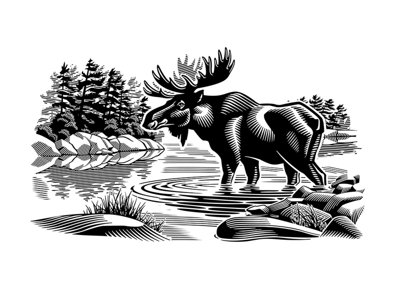 Canadian Wilderness - GA734