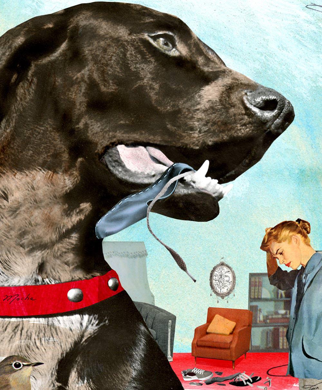 Dog Sitting - TH113