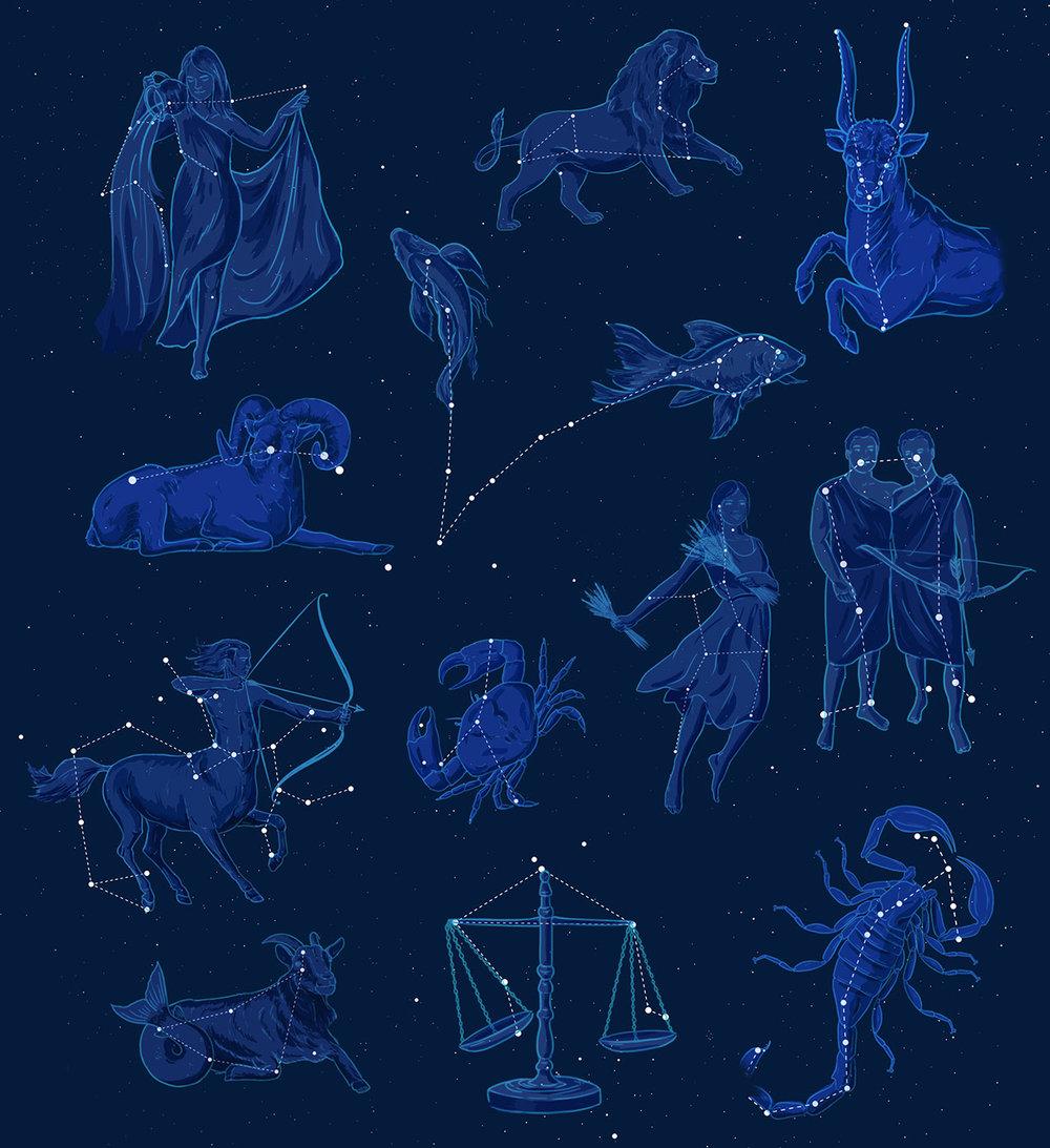 Zodiac at Night - JD465