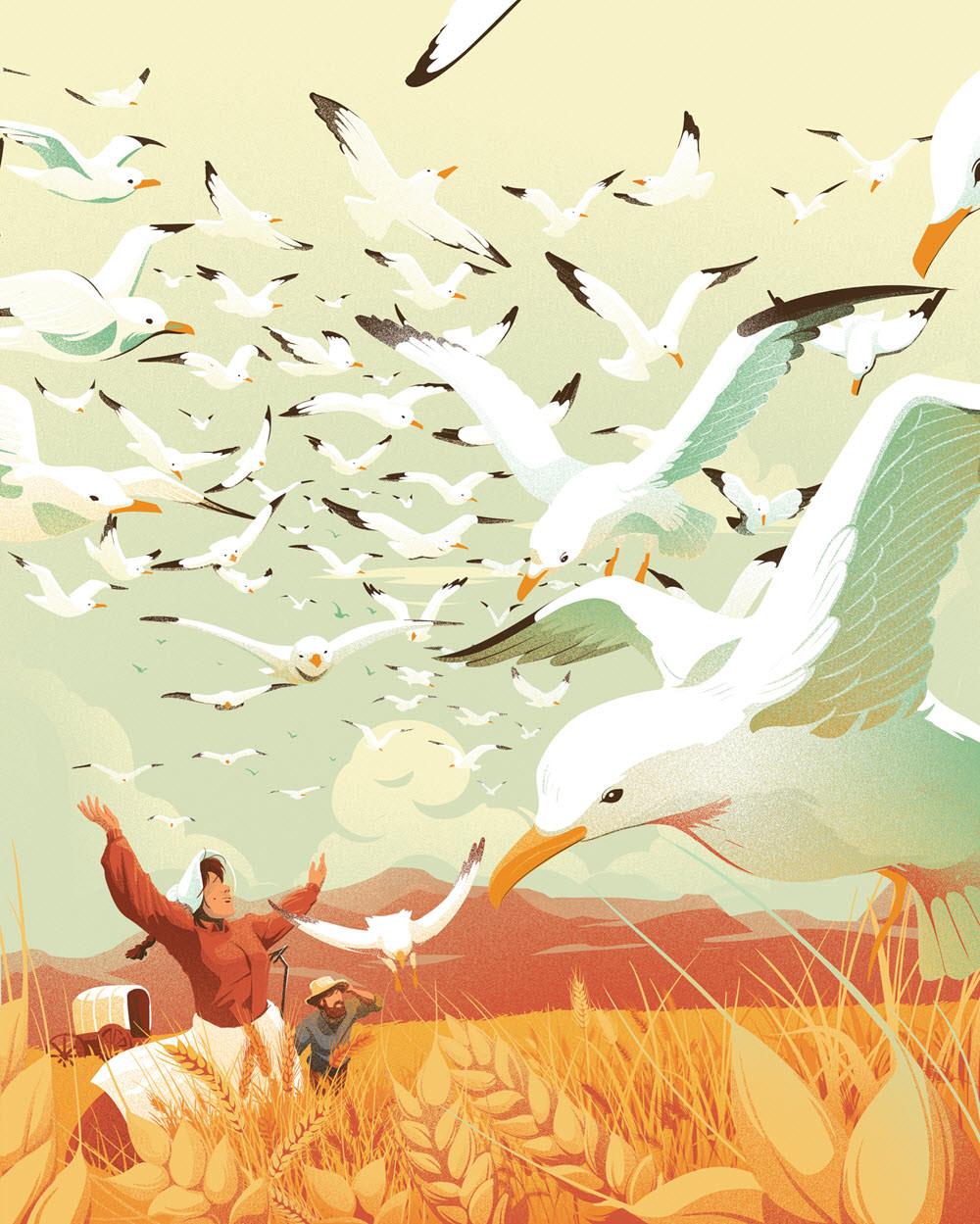 Soaring Birds - EC403