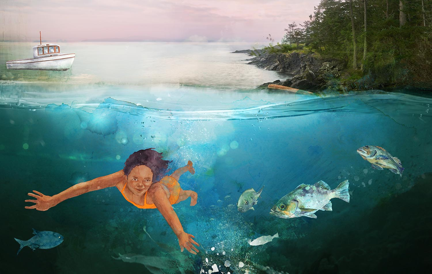 Interior illustration for 'Swimming with Seals' published by Orca Book Publishers