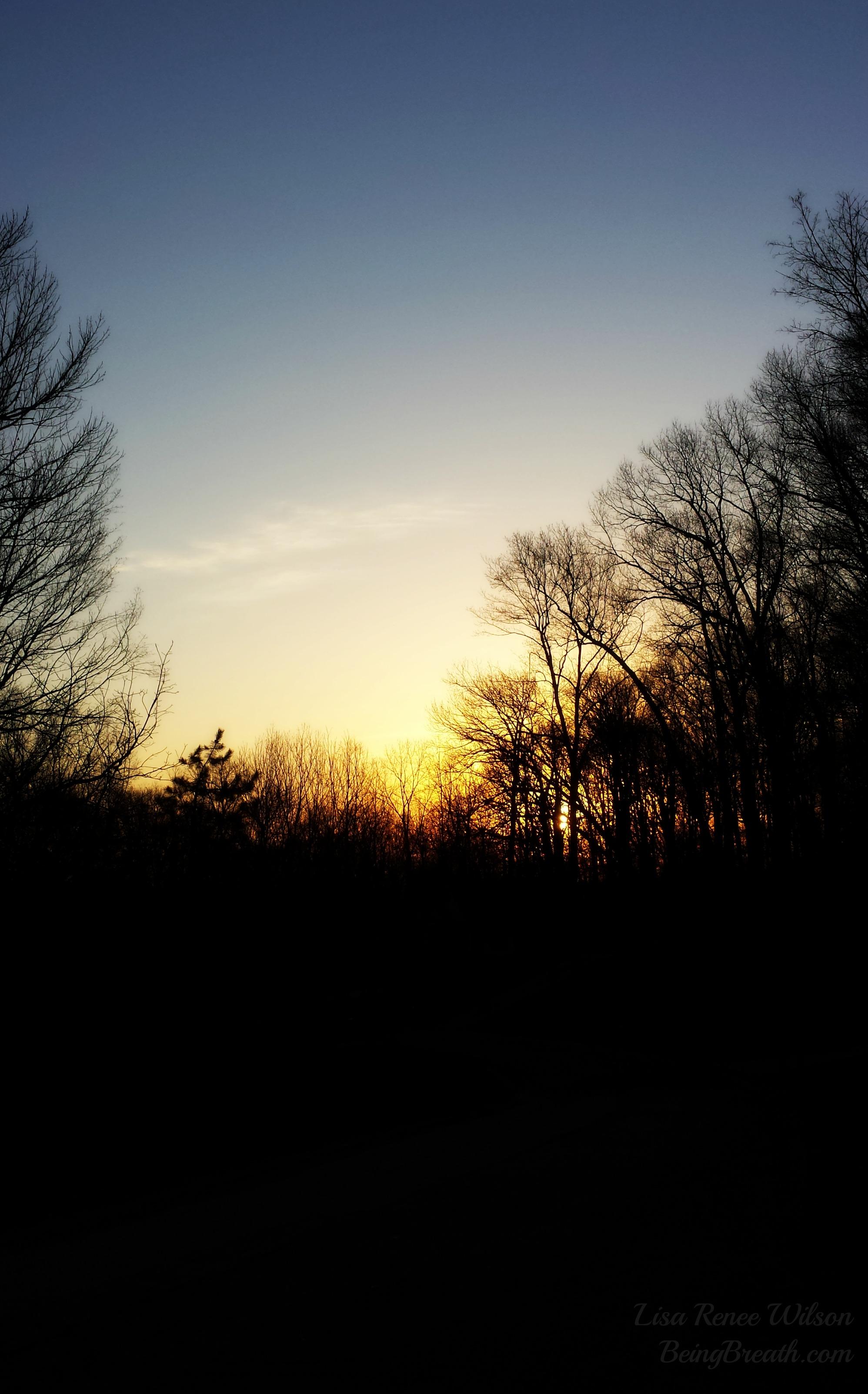 FB_2014-04-01 07.47.01_Sunrise.jpg