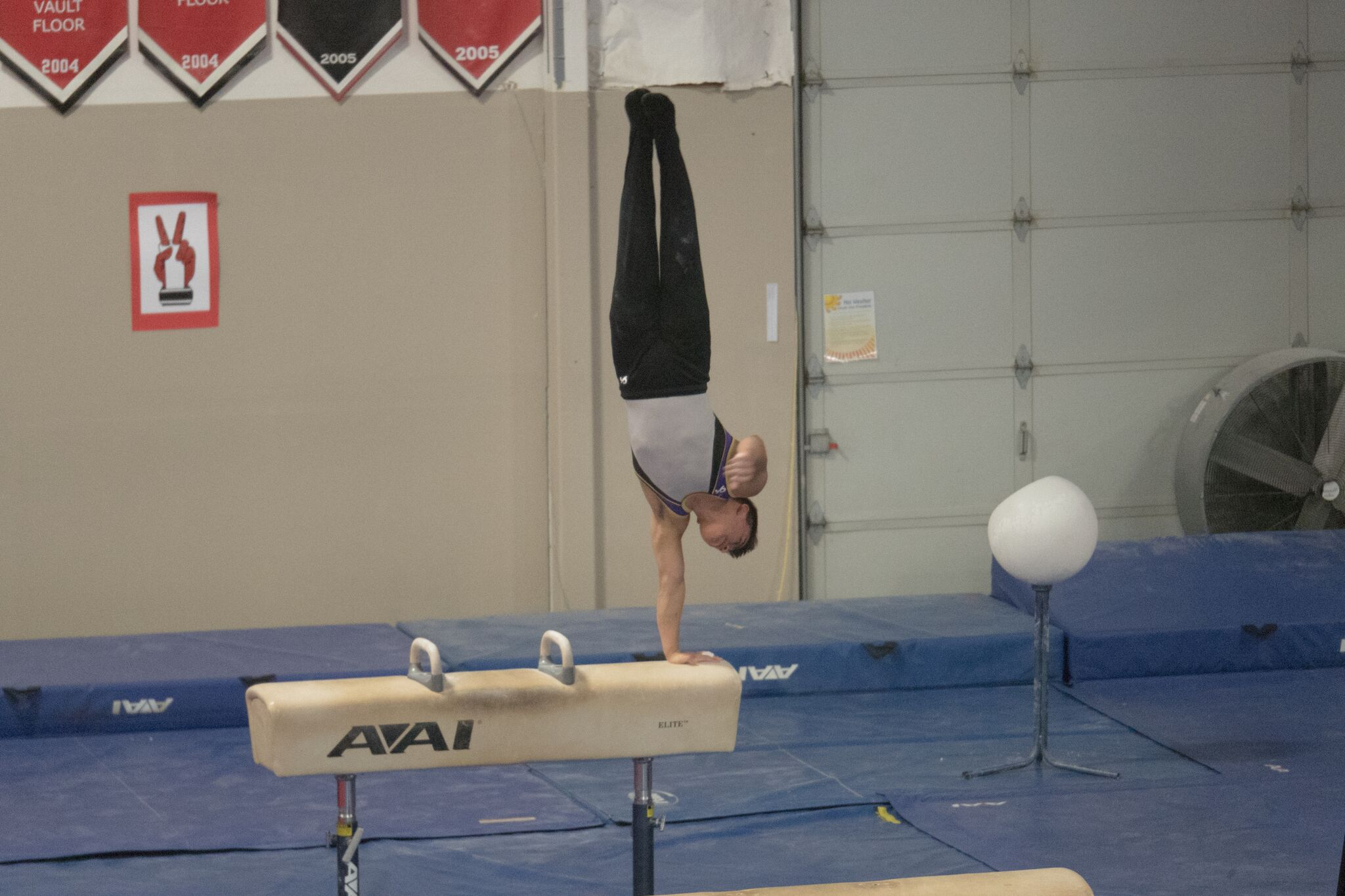 kevin level 10 pommel hors.jpeg