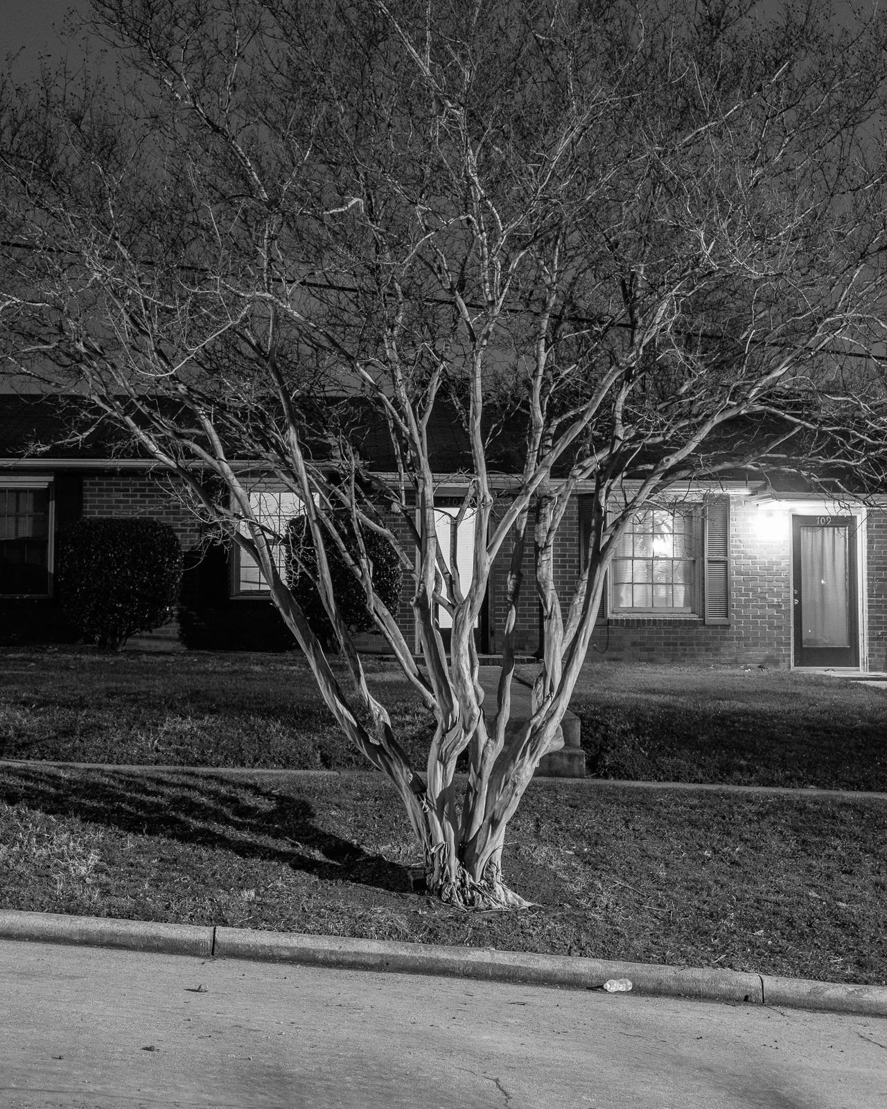 Oakwood, Raleigh, North Carolina, 2015-3.jpg