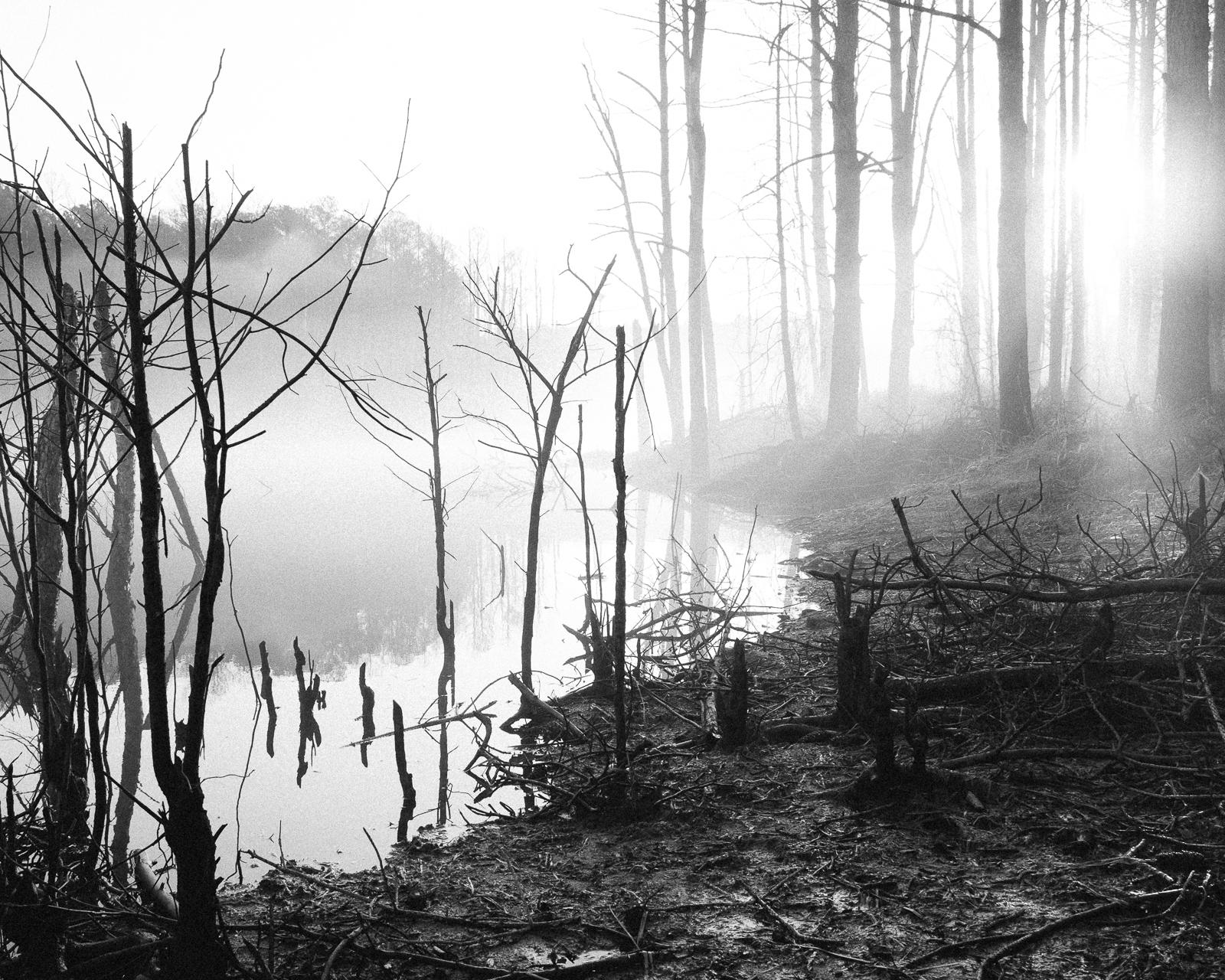 Jordan Lake, North Carolina, 2015-4.jpg
