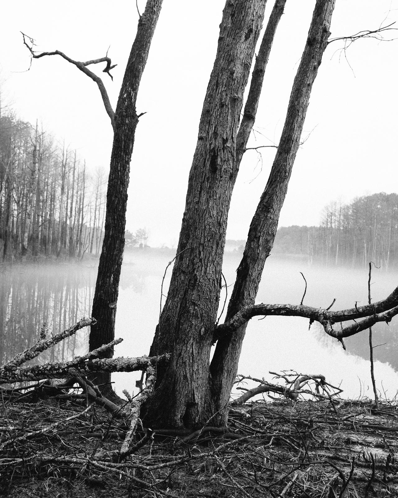 Jordan Lake, North Carolina, 2015-7.jpg