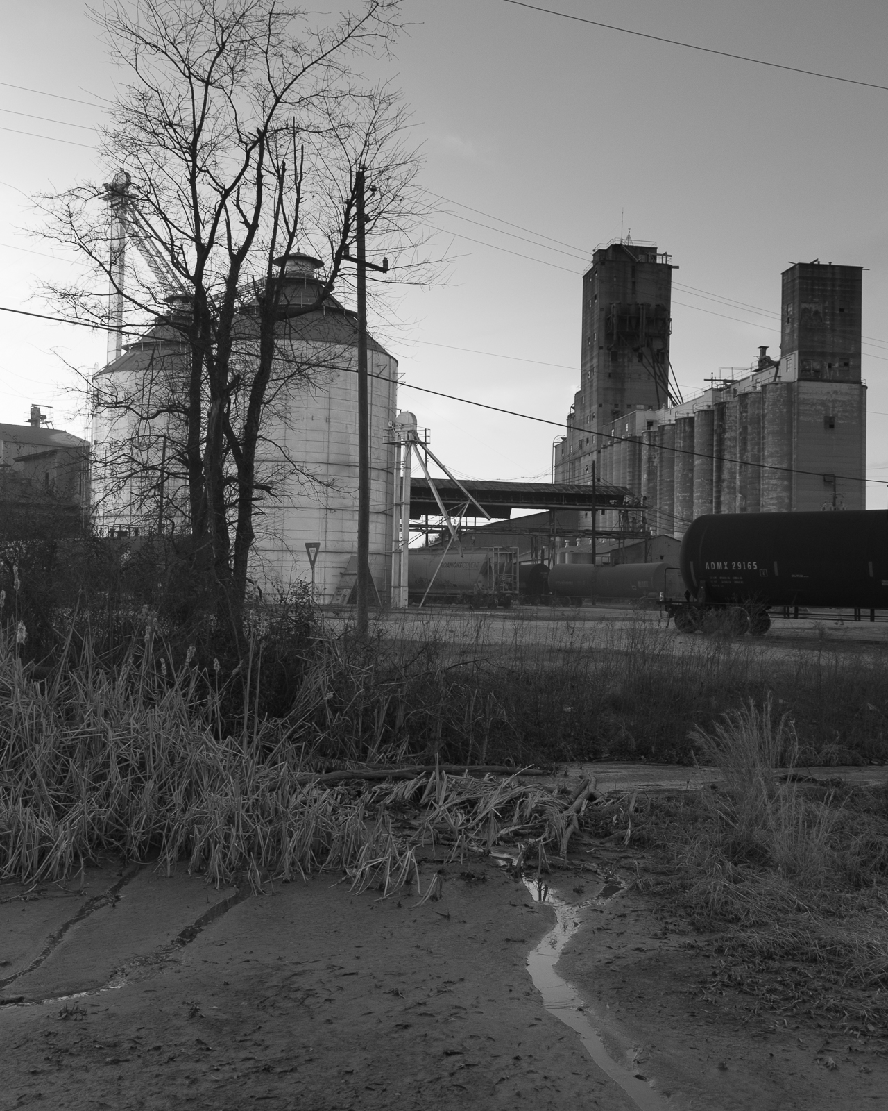 Selma, North Carolina, 2015-27.jpg