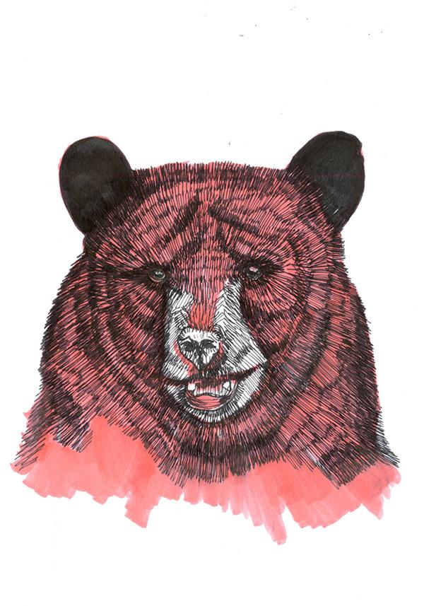bear iii 2014