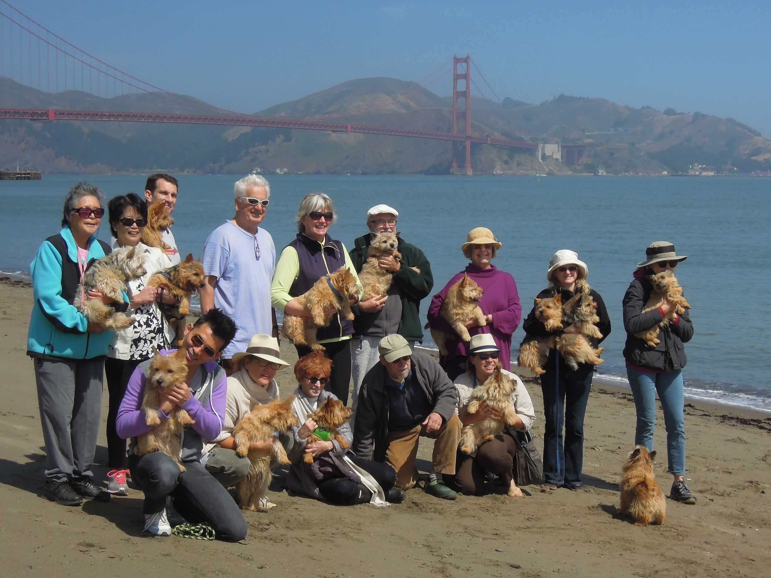 Group Photo at Crissy Field 2014.jpg