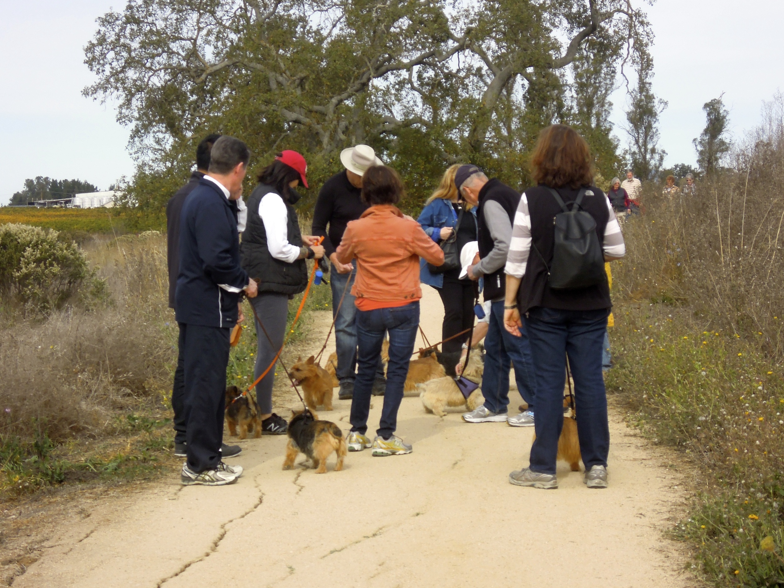 On the trail at the Balletto Winery Walk 2013.jpg
