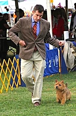 Cary Trexler, Board Member