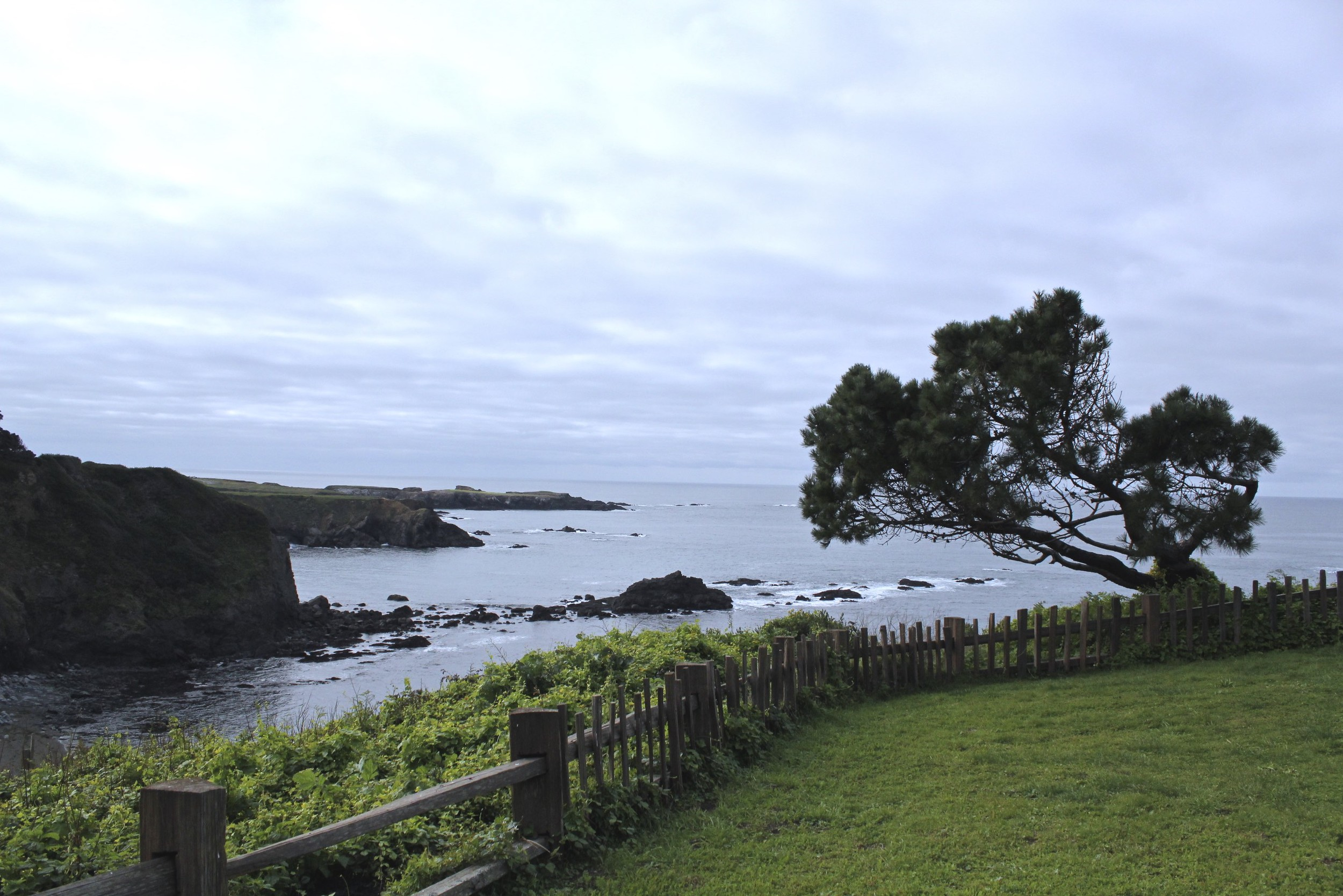 Mendocino overlook