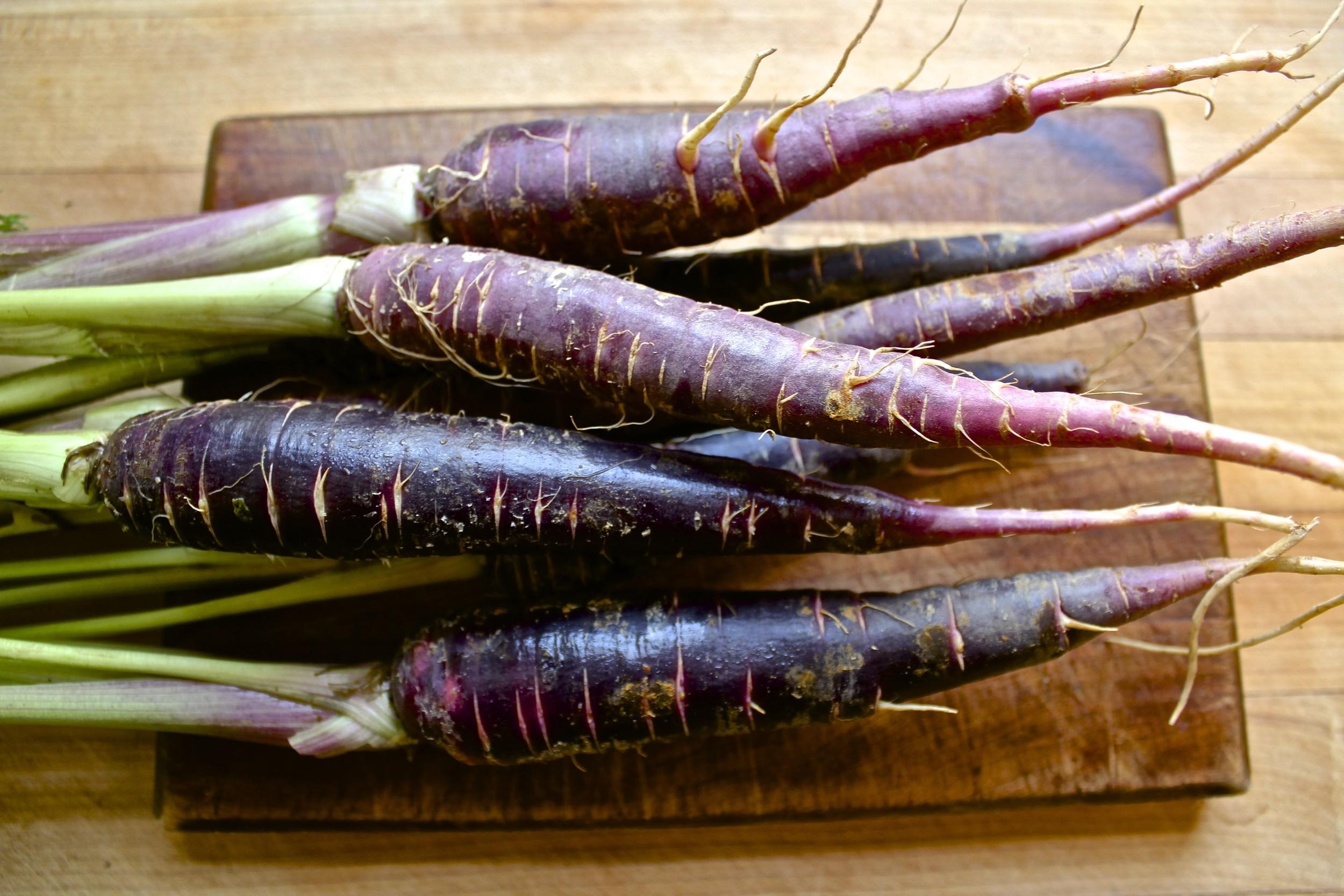 purple carrots.jpg