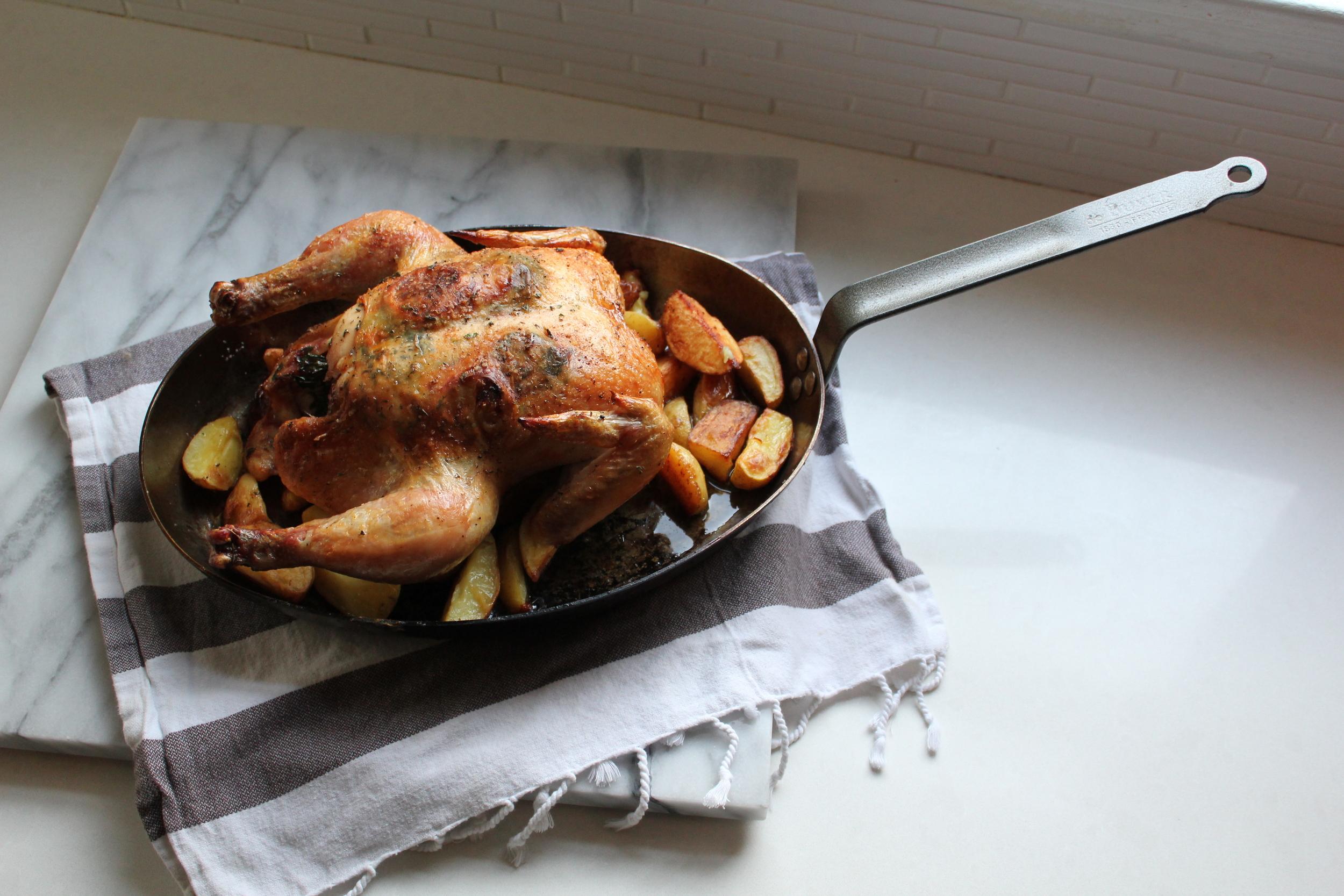 Chicken 101