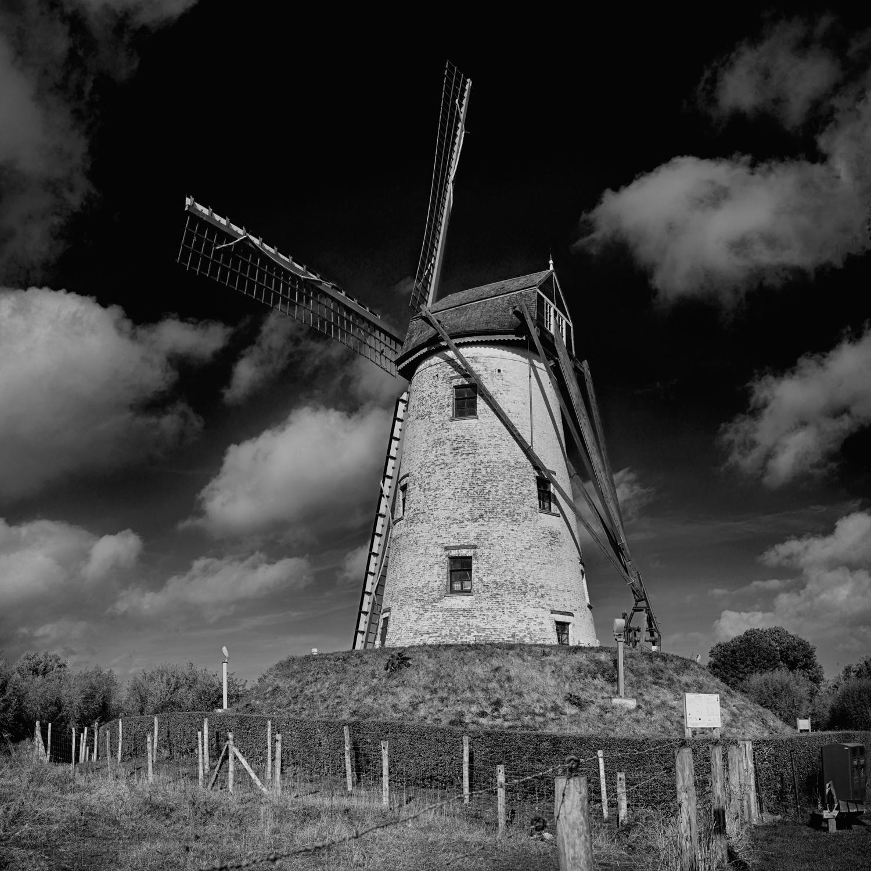 Windmill4SqSp.jpg