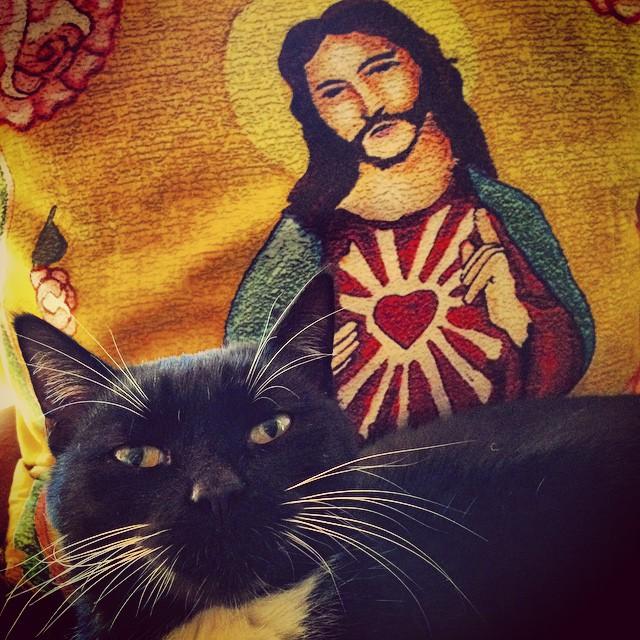 Jesus loves Owen #owencat @ryan_agar #getcreative