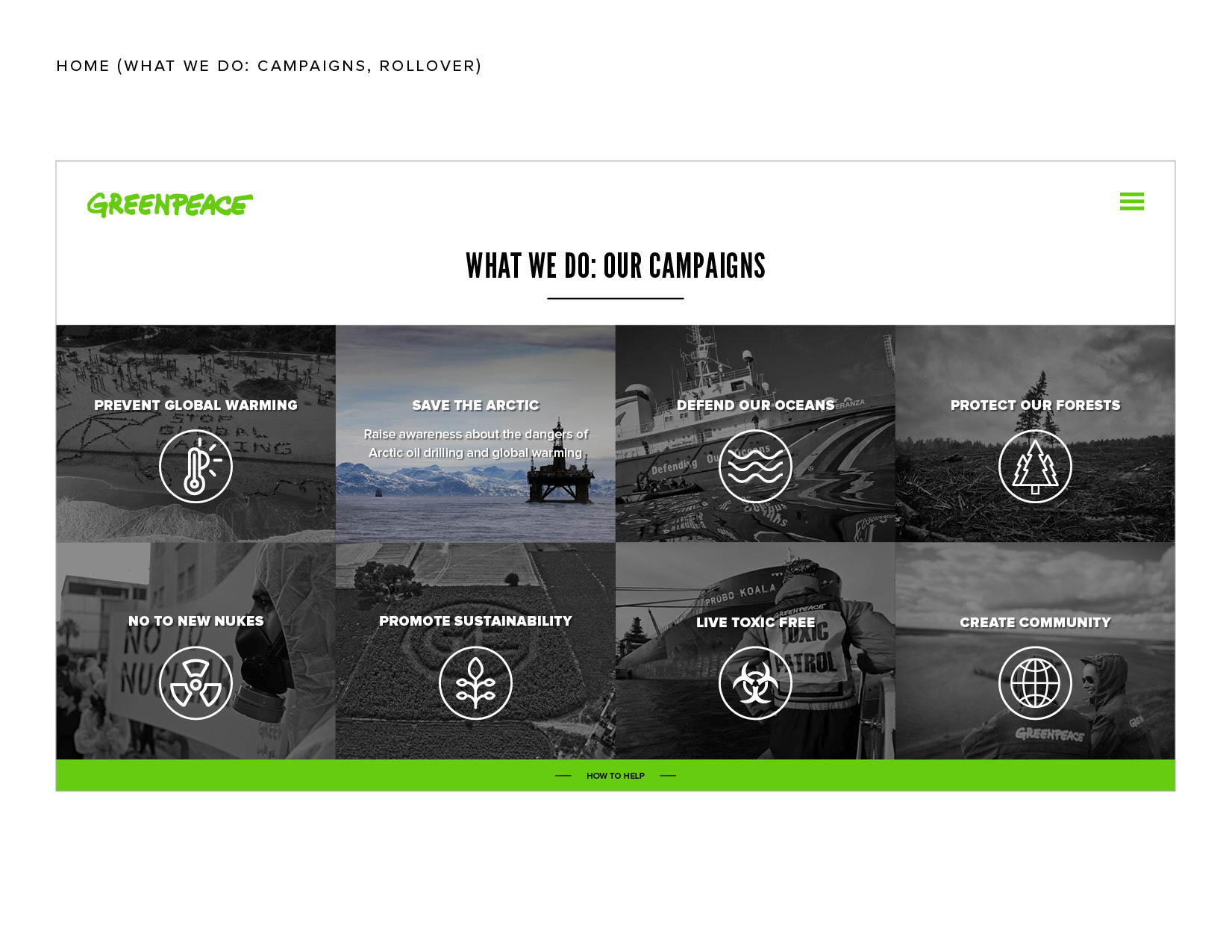 greenpeace10.jpg