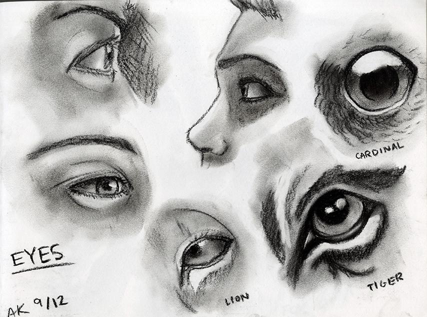 Charcoal Study_Eyes_SM.jpg