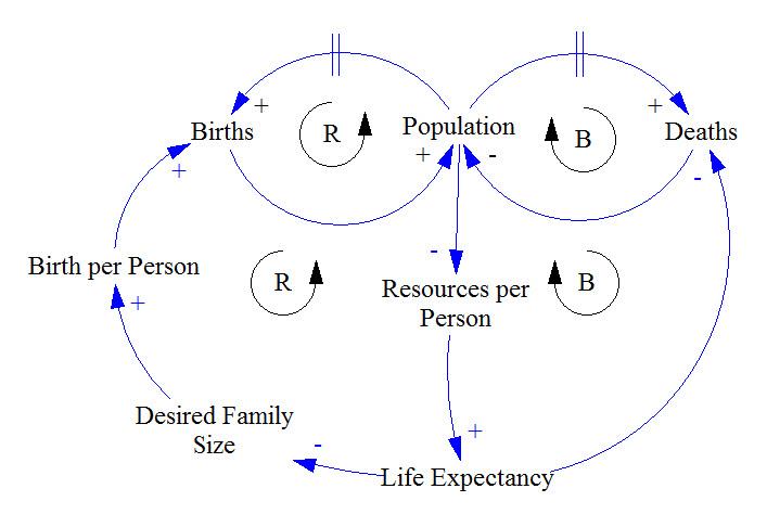 Learn to Read Causal Loop Diagrams