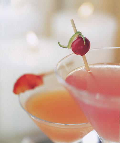 cocktails11 copy.jpg