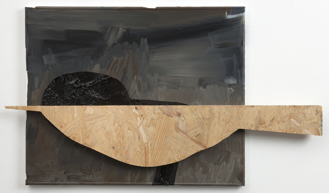 I Am Not A Bird, 2011 Oil and wood on linen 16 x 22 inches