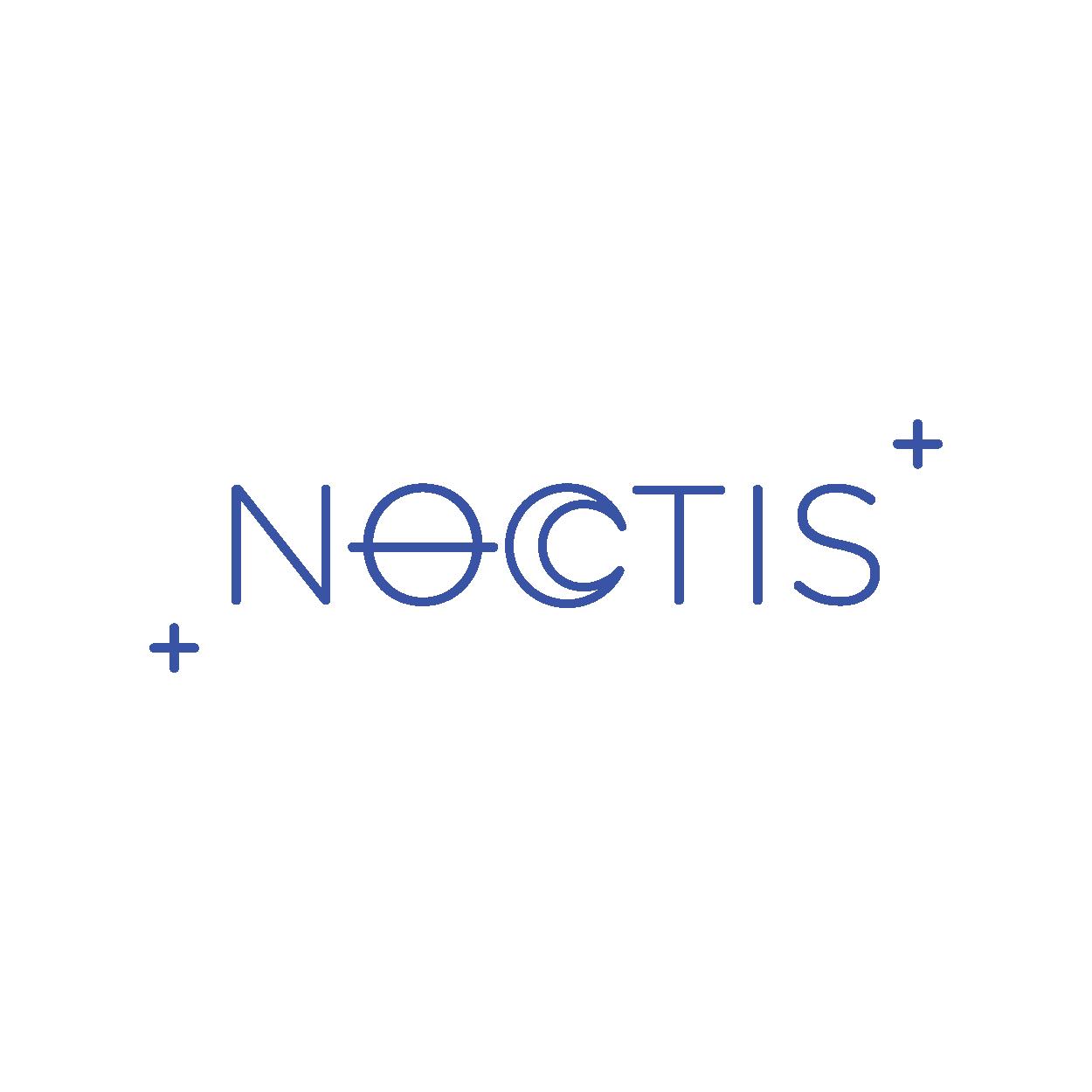 08-noctis2.png