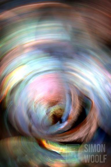 Paua Swirl 1_7PW3853.jpg