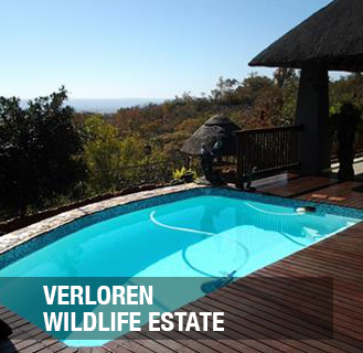 <p>One of the most favoured Residential Wildlife Estates in Southern Africa- only 6% of the estate will be developed.<a href=/sondela-1-1-1-1-1>More →</a></p>