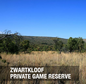 The development is situated 13 km West of Bela Bela (Warmbaths) with 2031 ha of mountainous bushveld.  Stands are full title and are 2 500sqm in size.  Each stand is unique with beautiful trees, views and the feeling of true bushveld ambience.  Building period is 3 years from registration.  Building restrictions: - Minimum 200 sqm - Maximum 400 sqm - Chromedek roofs - Maintenance free buildingstyle with aluminium frames - Build with brick, rock or plaster - Pools are allowed max 16sqm
