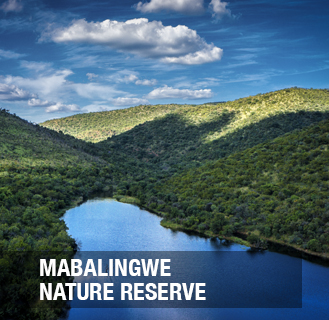 Mabalingwe Nature Reserve consists of 12 500 ha bushveld which ranges from sweet veld in the southern, eastern and western parts and sour veld to the northern parts of the Reserve. The Reserve hosts game such as Elephants, Rhino, Buffalo, Leopard, Oryx, Sable, Hyena, Jackal, Giraffe, Eland, Lions (enclosed camp) and many of the smaller species.   The development sections are divided into 10 different areas and each area are owned and managed by their own Body Corporate. Owners have traversing rights over the rest of the Reserve by owning a ownercard or by driving a marked game drive vehicle.  Maintenance and Housekeeping services are available from the resort via prior arrangement and costs.  The stands available are re-sale stands and vary in sizes from 2 000 sqm up to 5 600 sqm and building regulations are set to ensure that the style of each home accommodates and blends with nature.  The development is Real Right of Extension and upon completion registered as a Sectional Title Property.