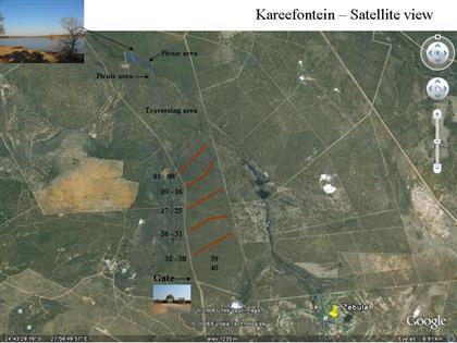Zebula Country Club & Spa Kareefontein Development - Phase 3