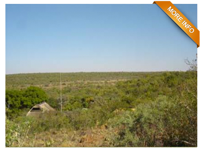 Ref: PT0009 |  Lovely 21 ha small holding.       9 Km from Bela Bela (Warmbaths), 25 km from Modimolle (Nylstroom).    Ideal for guest house opportunity! Fully game fenced and upmarket entrance    gate.  3 Homes, 3 flats, lapa, boma, staff quarters, bar, jacuzzi.      PRICE: R4 900 000 Neg.