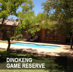 <p>The Dinokeng Game Reserve is the first free-roaming Big 5 residential game reserve in Gauteng <a href=/denokeng>More →</a></p>