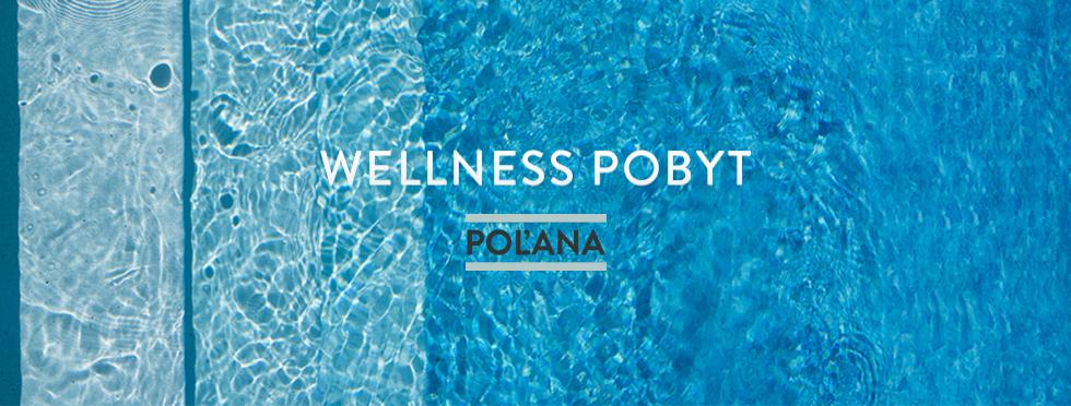 wellness.jpeg