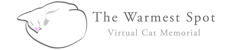 thewarmestspotlogo